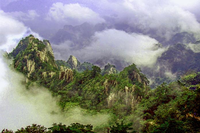 《九峰荟萃》黄岩.jpg