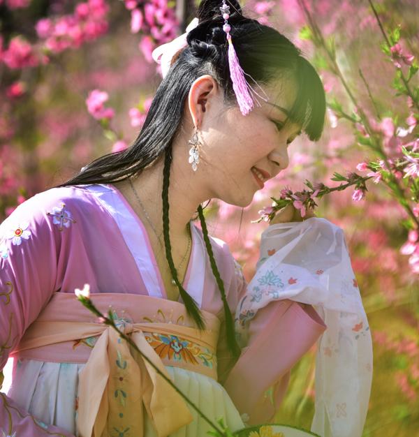 杨向阳春.jpg