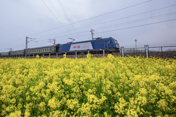 春天的列车 何进文.jpg