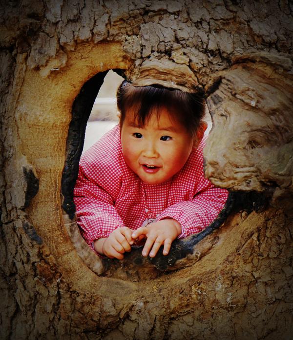 作品名称:《古树童影唤春醒》、作者:张宝富、13703756599、通讯地址:平顶山市区、拍摄地点:团城乡、jpg.jpg