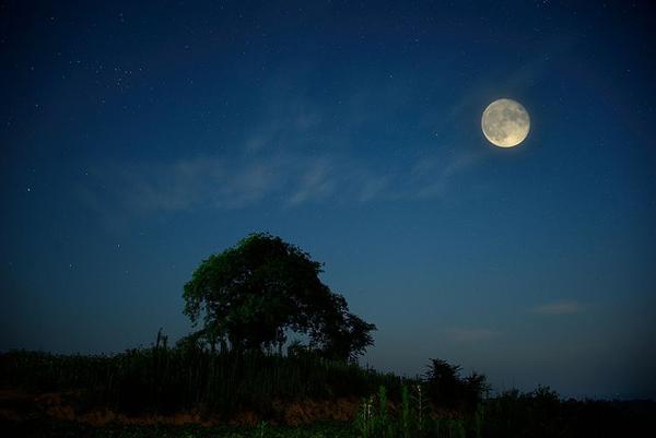 月是故乡明李涛.jpg